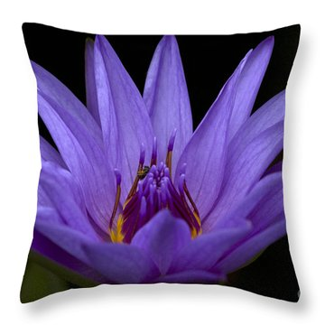 Throw Pillow featuring the photograph Water Lily Photo by Meg Rousher