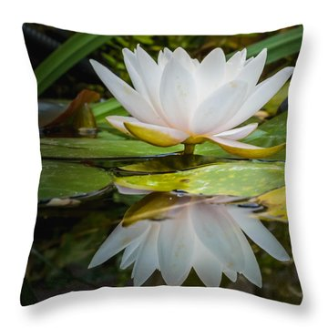 Water-lily Reflection Throw Pillow