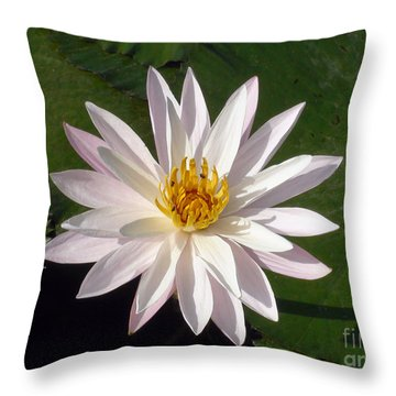 Water Lily Throw Pillow by Sergey Lukashin