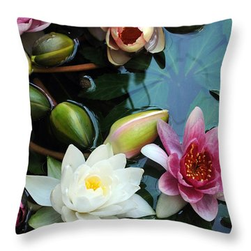 Throw Pillow featuring the photograph Water Lily Series 1 by Haleh Mahbod