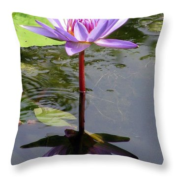 Water Lily - Shaded Throw Pillow by Pamela Critchlow