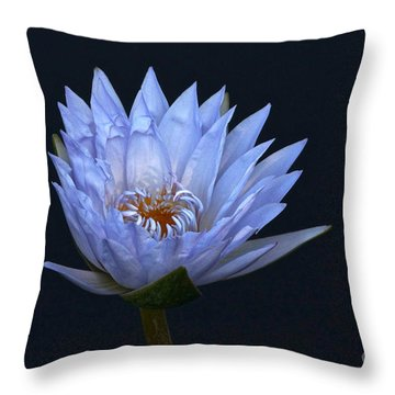 Water Lily Shades Of Blue And Lavender Throw Pillow