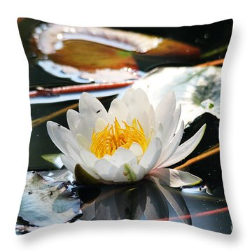 Throw Pillow featuring the photograph Water Lily by Trina  Ansel