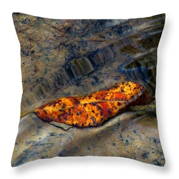 Water Logged Throw Pillow by Janice Westerberg