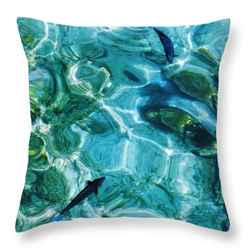 Water Meditation II. Five Elements. Healing With Feng Shui And Color Therapy In Interior Design Throw Pillow by Jenny Rainbow