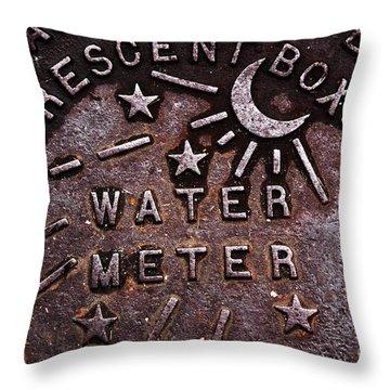 Water Meter Throw Pillow