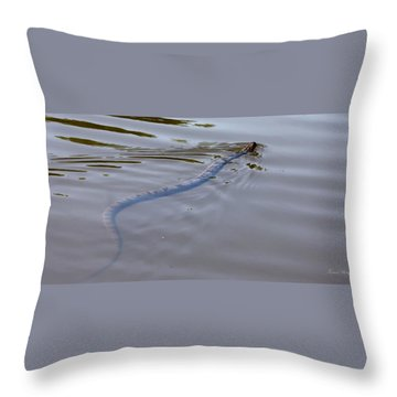 water Moccasin  Throw Pillow by Debra Forand