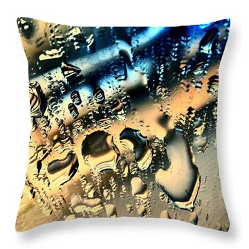 Water On The Mirror 2 Throw Pillow by Jason Michael Roust