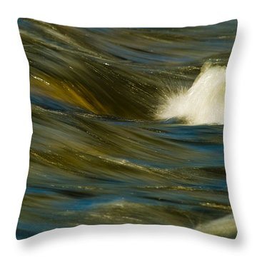 Water Play Throw Pillow by Bill Gallagher