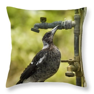 Water Please 01 Throw Pillow by Kevin Chippindall