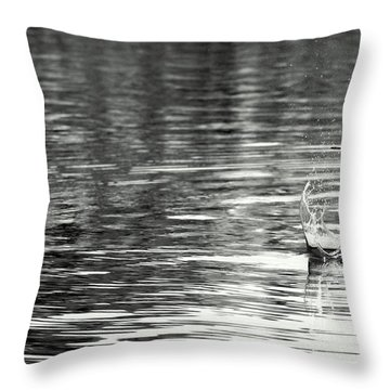 Water Throw Pillow by Prajakta P