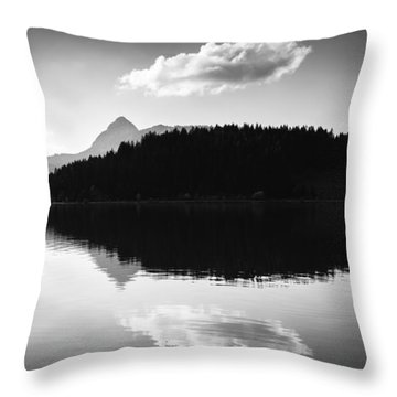 Water Reflection Black And White Throw Pillow