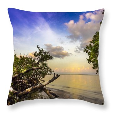 Water Sky Throw Pillow