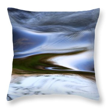 Water Swallow Throw Pillow by Anna Lozyk Romeo