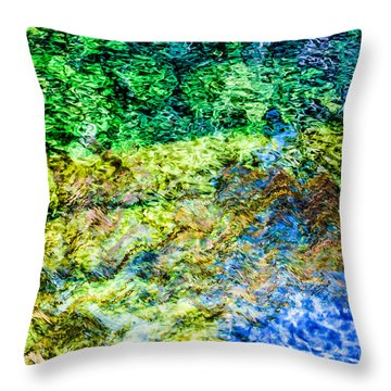 Water Tree Reflections Throw Pillow