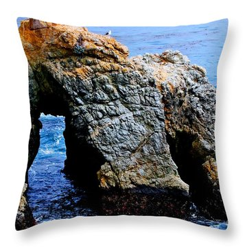 Water Tunnel Throw Pillow