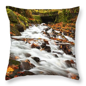 Water Under The Bridge Throw Pillow by Mike  Dawson