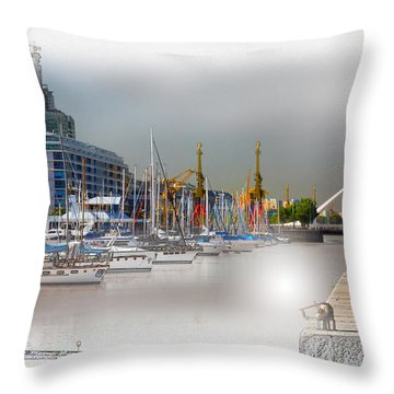 Water Way Buenos Aires Throw Pillow