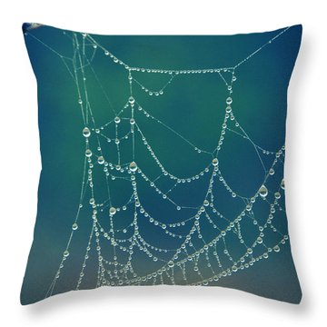 Water Web Throw Pillow
