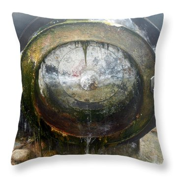 Throw Pillow featuring the photograph Water Wheel by Tarey Potter
