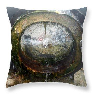 Water Wheel Throw Pillow