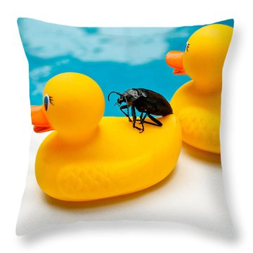 Waterbug Takes Yellow Taxi Throw Pillow by Amy Cicconi