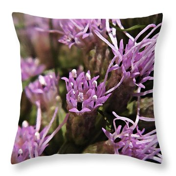 Watercolor Liatris  Throw Pillow