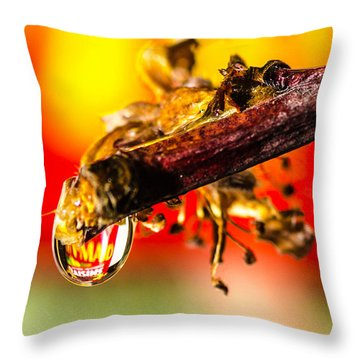 Waterdrop Refraction  Throw Pillow by Bruce Pritchett