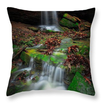Frankfort Mineral Springs Waterfall  Throw Pillow