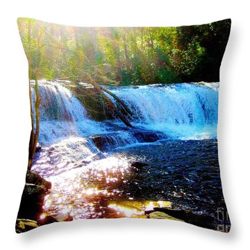 Throw Pillow featuring the photograph Waterfall At Dupont Forest Park Nc 2 by Annie Zeno