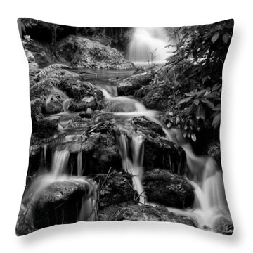 Waterfall At Rainbow Springs Throw Pillow by Beverly Stapleton