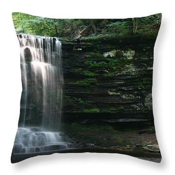 Waterfall At Ricketts Glen Throw Pillow