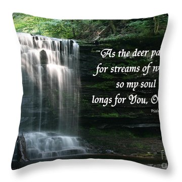Waterfall At Ricketts Glen - Psalm 42 Throw Pillow by E B Schmidt