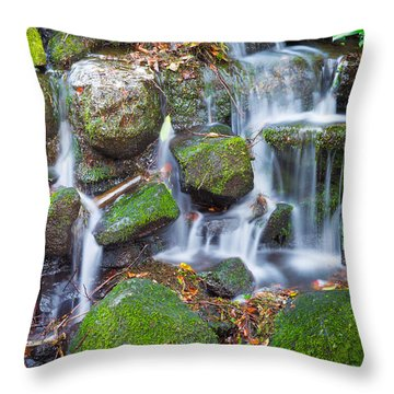 Waterfall In Marlay Park Throw Pillow by Semmick Photo