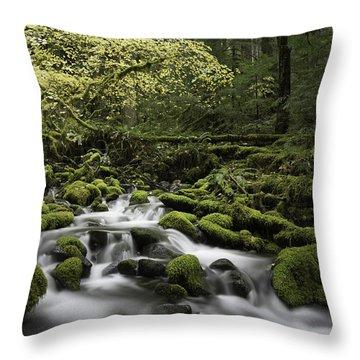 Waterfall In The Fall Throw Pillow