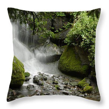Waterfall Mist Throw Pillow