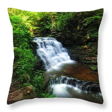 Waterfall Paradise With Stone Stairway Throw Pillow by Aaron Smith