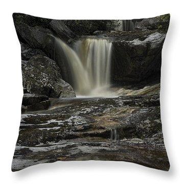 Waterfall Reflection On Big Run River  Throw Pillow by Dan Friend