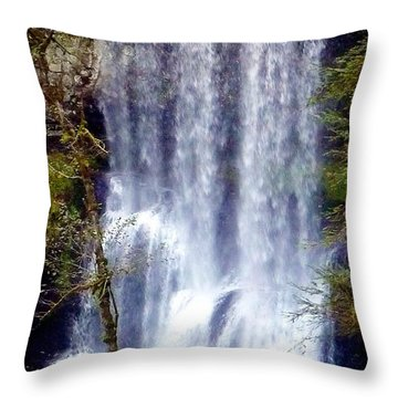 Waterfall South Throw Pillow by Susan Garren