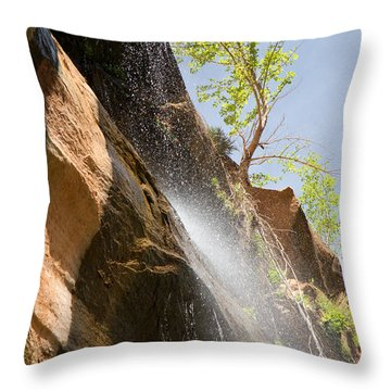 Waterfall Zion National Park Throw Pillow