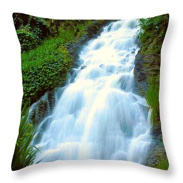 Waterfalls In Golden Gate Park Throw Pillow