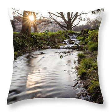 Waterfalls In The Park Throw Pillow by Alfio Finocchiaro