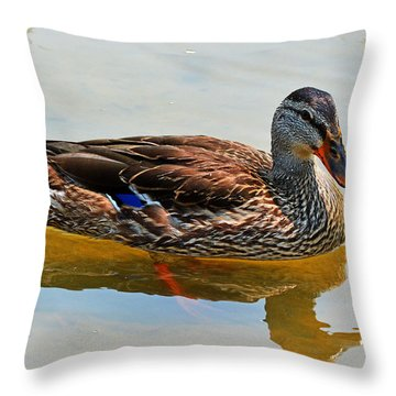 Waterfowl Throw Pillow