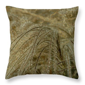 Waterfront Throw Pillow by Joseph Yarbrough