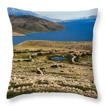 Watering Place Throw Pillow by Davorin Mance