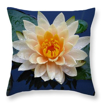 Waterlily After A Shower Throw Pillow by Raymond Salani III