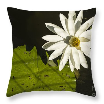 Waterlily Through A Fence Throw Pillow