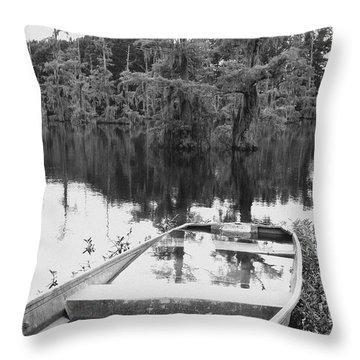 Waterlogged Throw Pillow by Scott Pellegrin