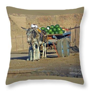 Watermellon Cart Karnac Egypt Throw Pillow