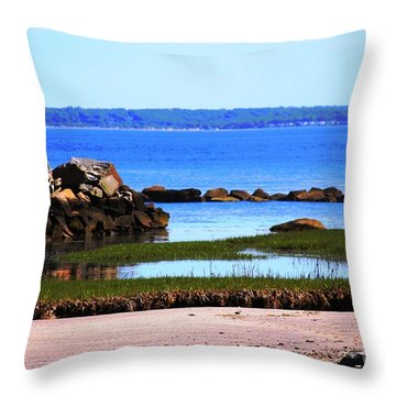Waters Edge Throw Pillow by Judy Palkimas